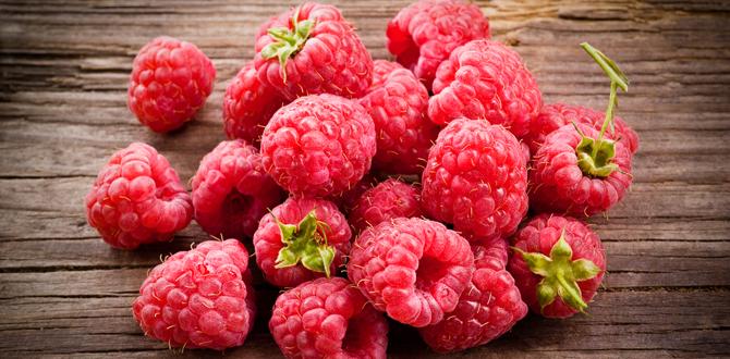 Raspberry Pudding Cake