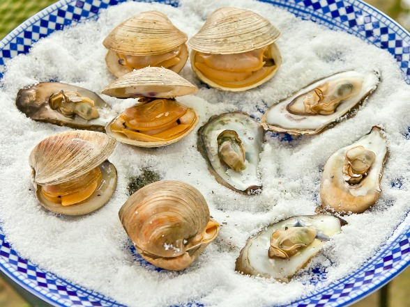 _Grilled-Clams-and-Oysters