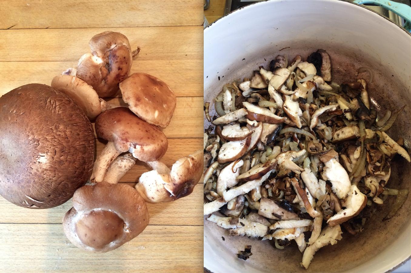 DOuble mushroom